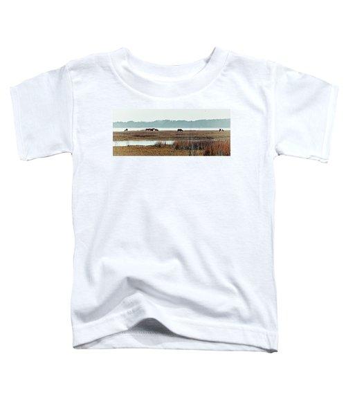 Band Of Wild Horses Along Sinepuxent Bay Toddler T-Shirt
