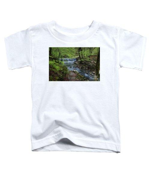 Bard Springs Toddler T-Shirt