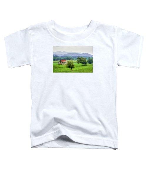 Barn In Smokies 2 Toddler T-Shirt