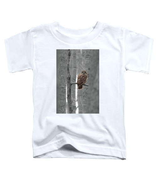 Barred Owl In Winter Woods #1 Toddler T-Shirt