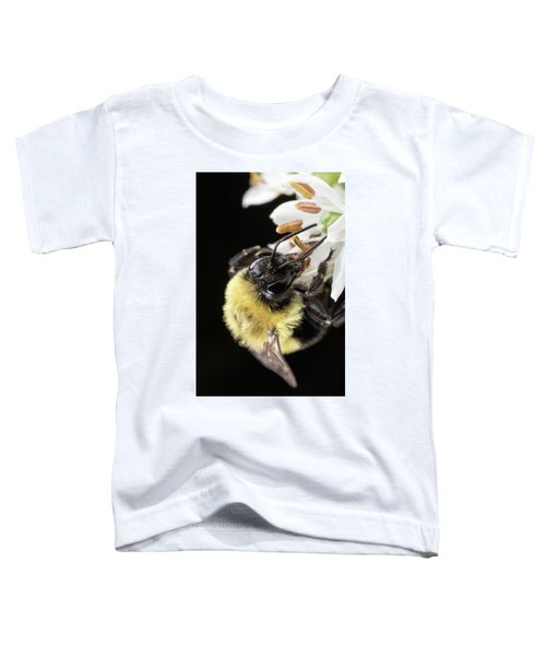 Bee Macro 1 Toddler T-Shirt