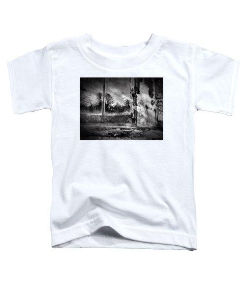 Benjamin Nye Window Toddler T-Shirt