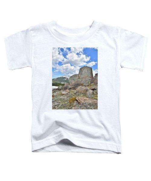 Big Horn Pass Rock Croppings Toddler T-Shirt