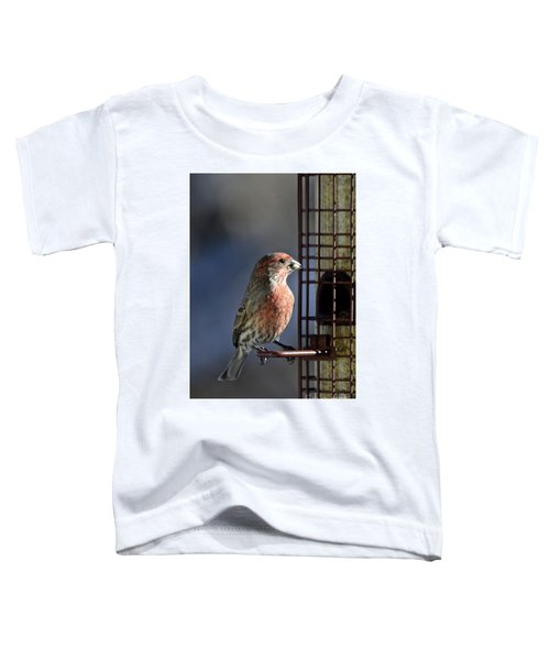 Bird Feeding In The Afternoon Sun Toddler T-Shirt