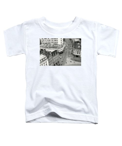 Birds Eye View Toddler T-Shirt