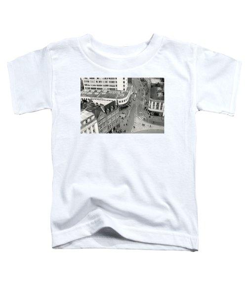 Birds Eye View Toddler T-Shirt