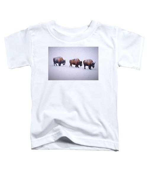 Bison March Impressions Toddler T-Shirt