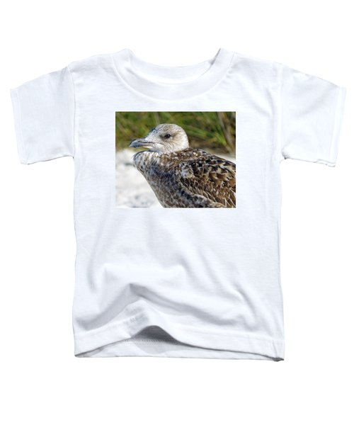 Brown Gull At Wiggins Pass Toddler T-Shirt