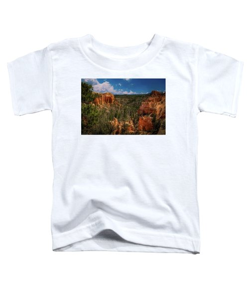 Bryce Canyon From The Top Toddler T-Shirt