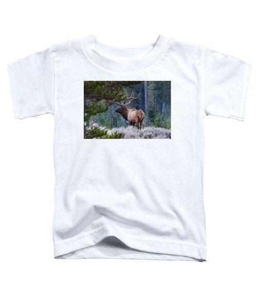 Bull Elk In Forest Toddler T-Shirt