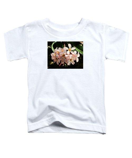 Bunch Of Plumeria Toddler T-Shirt
