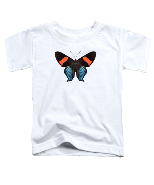 Butterfly Species Butterfly Species Ancyluris Miranda In High Definition Extreme Focus Isolated On W Toddler T-Shirt
