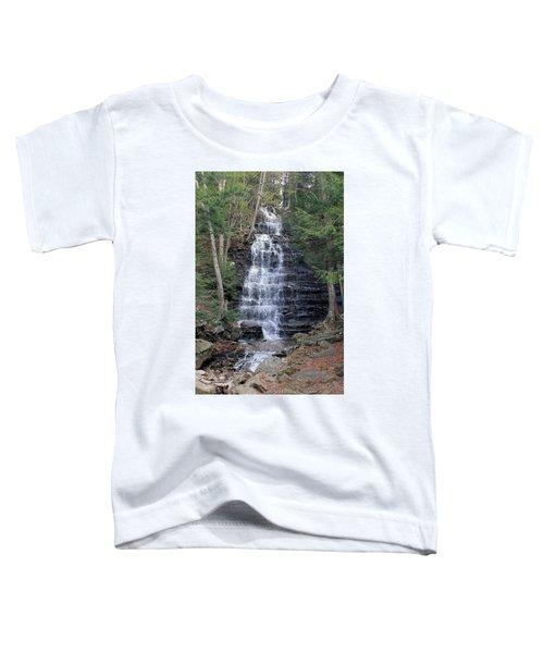 Buttermilk Falls Toddler T-Shirt