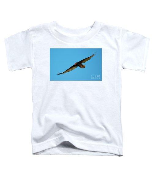 Buzzard Circling Toddler T-Shirt by Mike Dawson