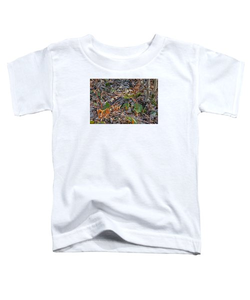 Camouflaged Plumage With Fallen Leaves Toddler T-Shirt by Asbed Iskedjian