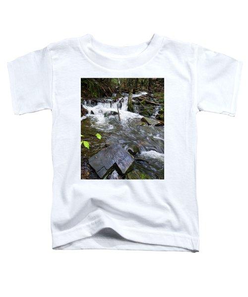 Cascade Falls Stream, Farmington, Maine  -30329 Toddler T-Shirt