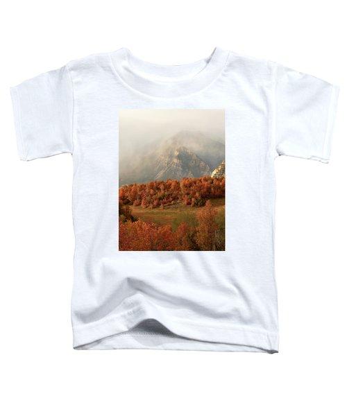 Cascading Fall Toddler T-Shirt