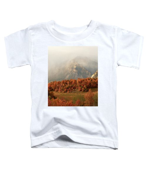 Cascading Fall Toddler T-Shirt