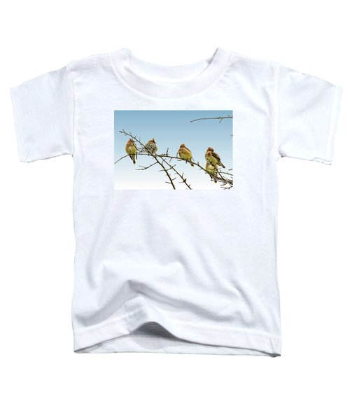 Cedar Waxwings Toddler T-Shirt