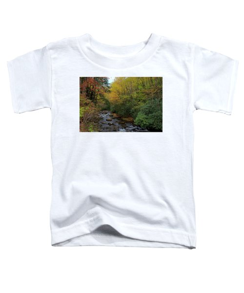 Cold Stream Toddler T-Shirt