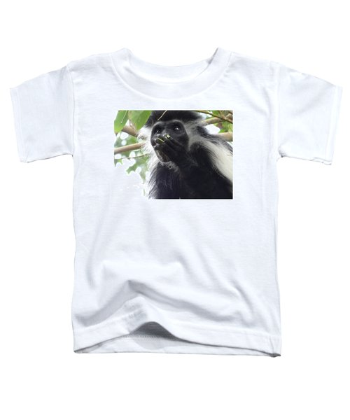 Colobus Monkey Eating Leaves In A Tree 2 Toddler T-Shirt
