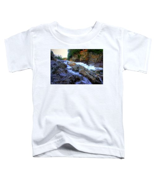 Color Steps At Livermore Falls Toddler T-Shirt