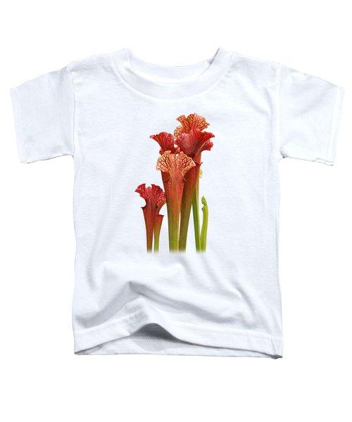 Come Into My Parlour - Carnivorous Sarracenia Toddler T-Shirt