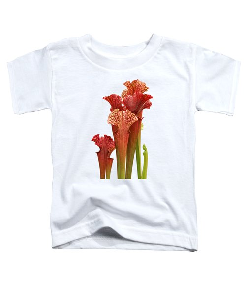 Come Into My Parlour - Carnivorous Sarracenia Toddler T-Shirt