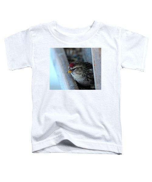 Common Redpoll Toddler T-Shirt