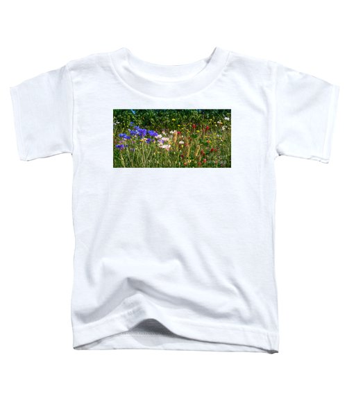 Country Wildflowers Iv Toddler T-Shirt