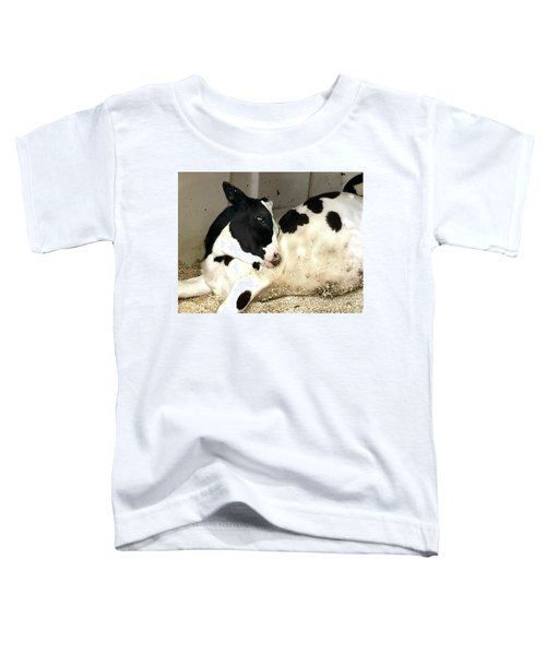Cow Cutie Toddler T-Shirt
