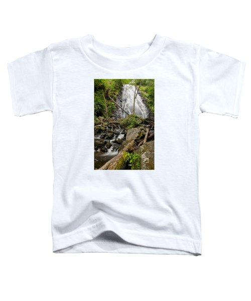Crabtree-12 Toddler T-Shirt