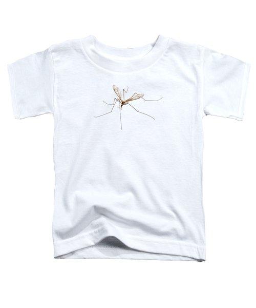 Cranefly Species Tipula Oleracea Toddler T-Shirt