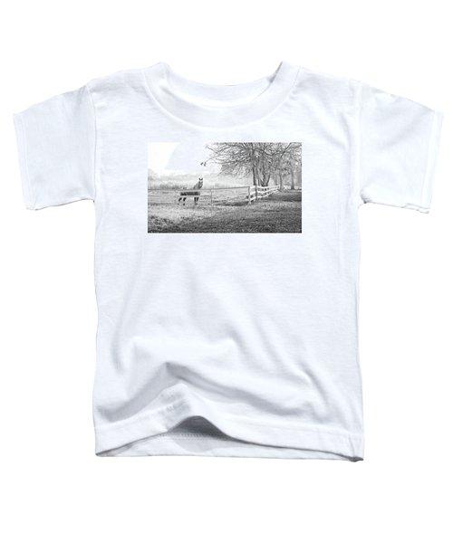 Curious Fog Toddler T-Shirt