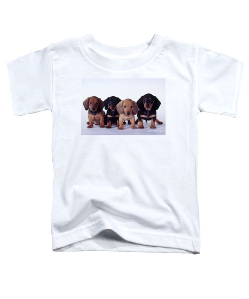 Dachshund Puppies  Toddler T-Shirt