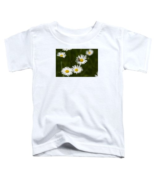 Daisy Visitor Toddler T-Shirt