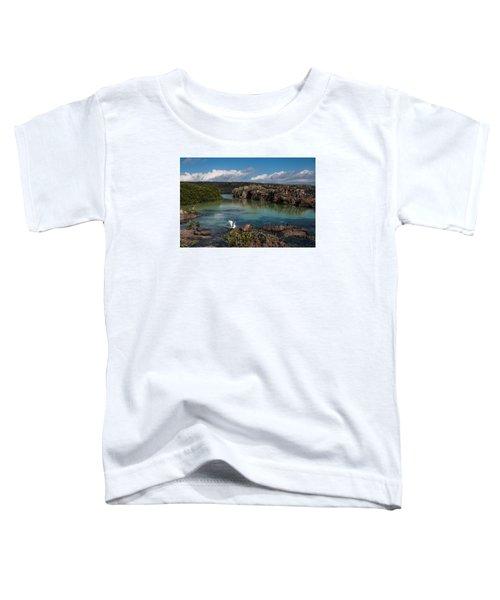 Darwin Bay     Genovesa Island      Galapagos Islands Toddler T-Shirt