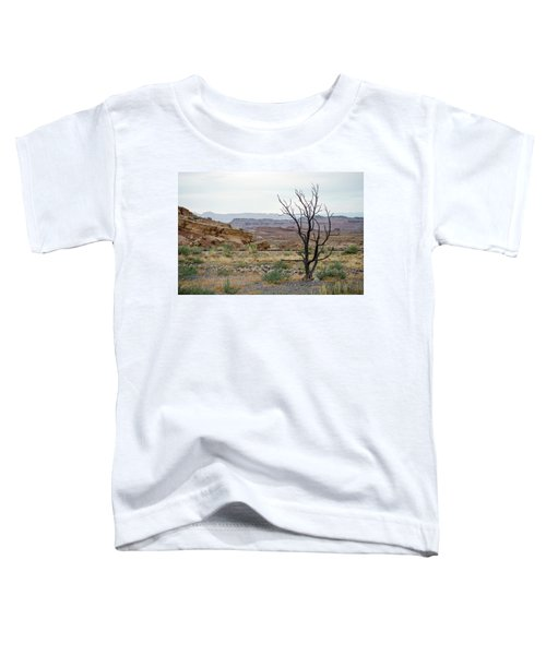 Desert Colors Toddler T-Shirt