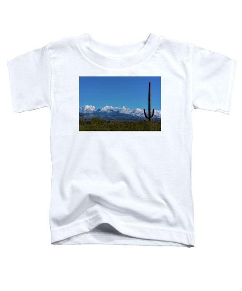 Desert Inversion Cactus Toddler T-Shirt