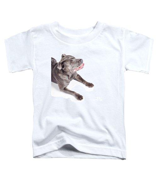 Dog Looking Up To Pet Copyspace Toddler T-Shirt