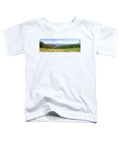 Down The Valley At Snowmass #2 Toddler T-Shirt