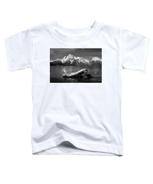 driftwood and Mt. Moran Toddler T-Shirt
