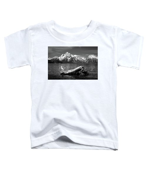 driftwood and Mt. Moran Toddler T-Shirt