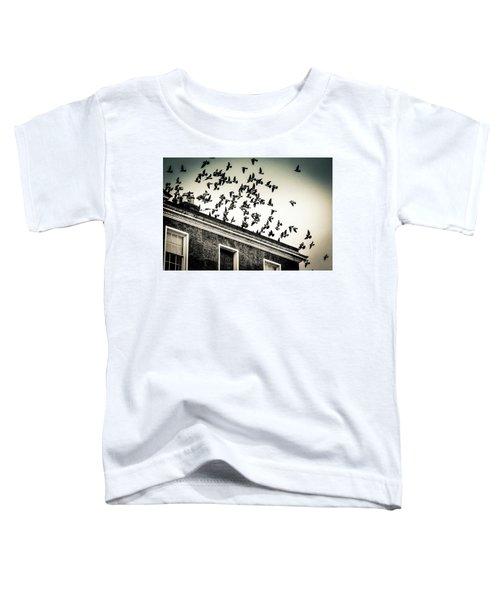 Flight Over Oscar Wilde's Hood, Dublin Toddler T-Shirt