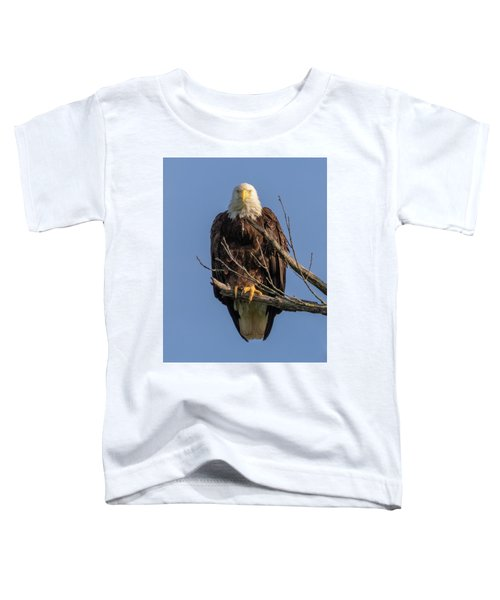 Eagle Stare Toddler T-Shirt