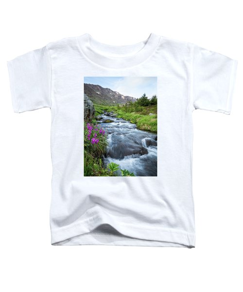 Early Days Of Summer Toddler T-Shirt