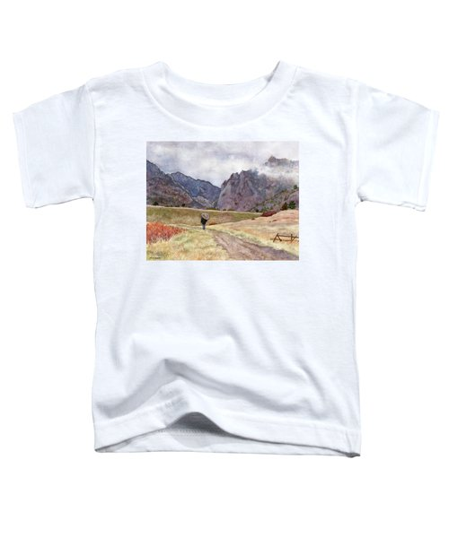 Eldorado Rain Toddler T-Shirt