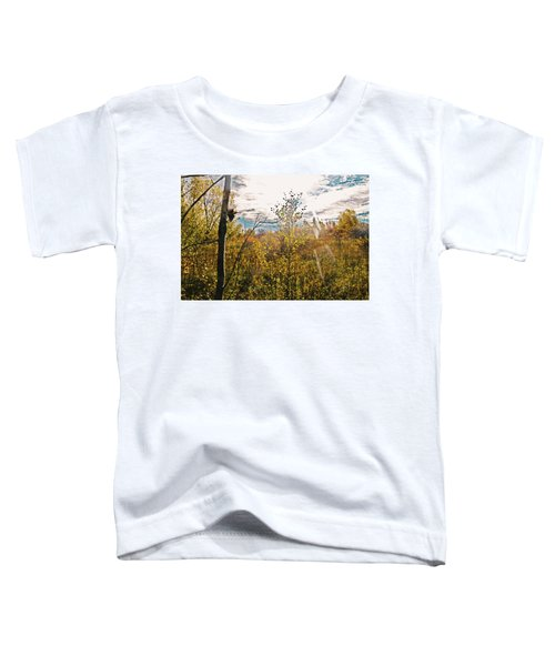 Evanescent Dreams Of Autumn Toddler T-Shirt