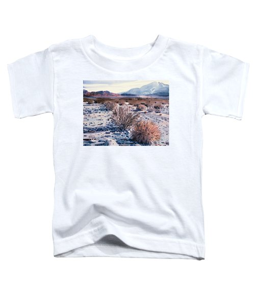 Evening In Death Valley Toddler T-Shirt by Donald Maier
