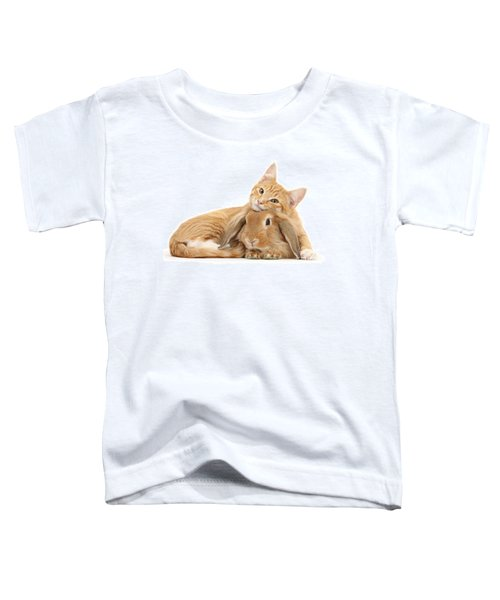 Everybody Needs A Bunny For A Pillow Toddler T-Shirt